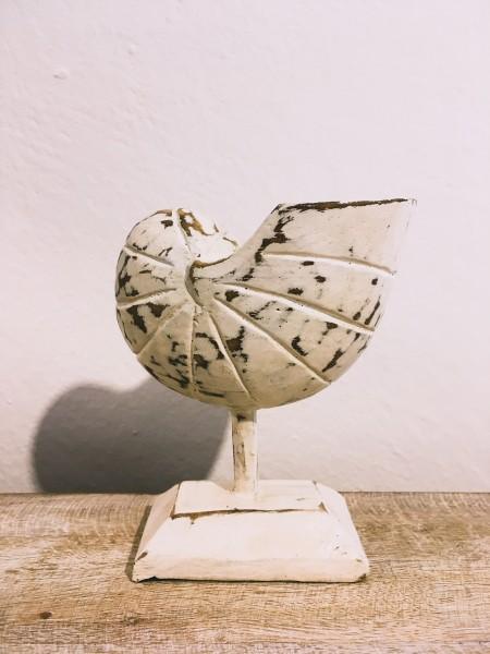 Nautilus auf Stab, Palmholz, Weiß - S; H ca. 13 cm